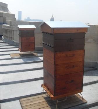(c) Nicolas Geant : les ruches sur le toit du Grand Palais