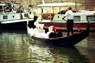 (c) Arsenal Venise en 2005 : l'association Paris Carnaval Arsenal organise chaque début avril son carnaval d'Arsenal Venise