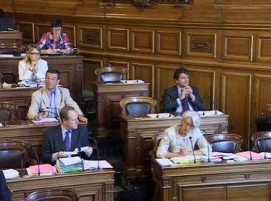 (c) Conseil de Paris du 05/07/2010
