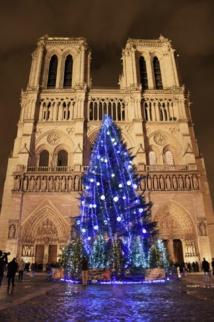 Inauguration du Sapin de Noël suédois sur le parvis de la cathédrale Notre-Dame à Paris.