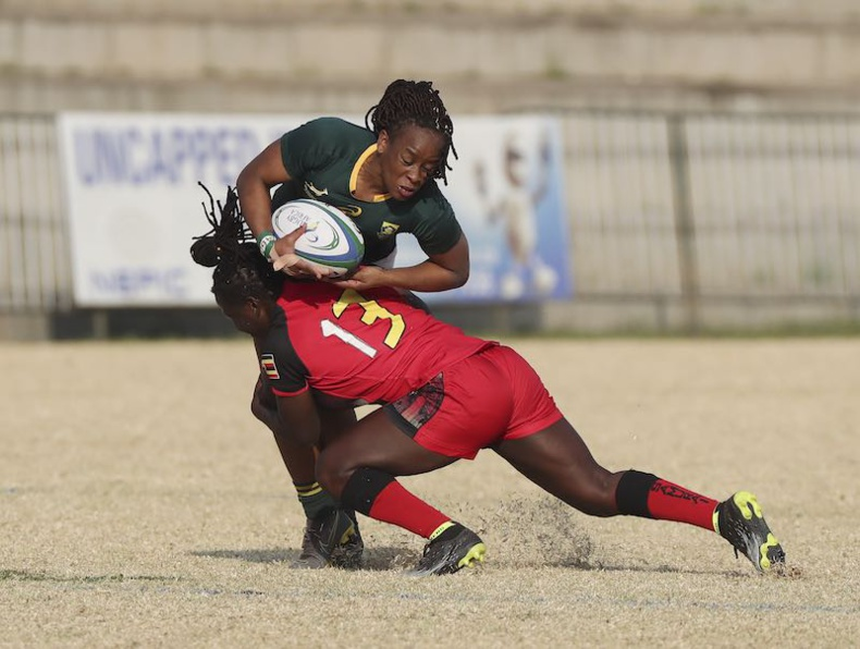 Coupe du Monde de Rugby - Qualifications Africaines : l'Afrique du Sud bat l'Ouganda à Johannesburg lors de la Coupe d'Or d'Afrique de Rugby. © Rugby Africa