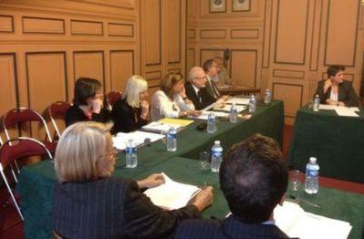 Au fond de g. à d. : Chantal  Tiberghien, Erika Duverger, Heidi Rançon-Clavenel, Alain-Pierre Levy et Arnaud Maggiar lors du conseil du 5 juin 2012.