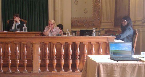 Conseil d'arrondissement le 25 juin 2012.