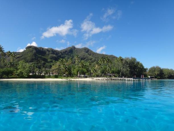 Note de la rédaction : Les ruines de l'ancien Club Med sur l'île de Moorea en Polynésie française - Juillet 2014 © JDD / Paris Tribune.
