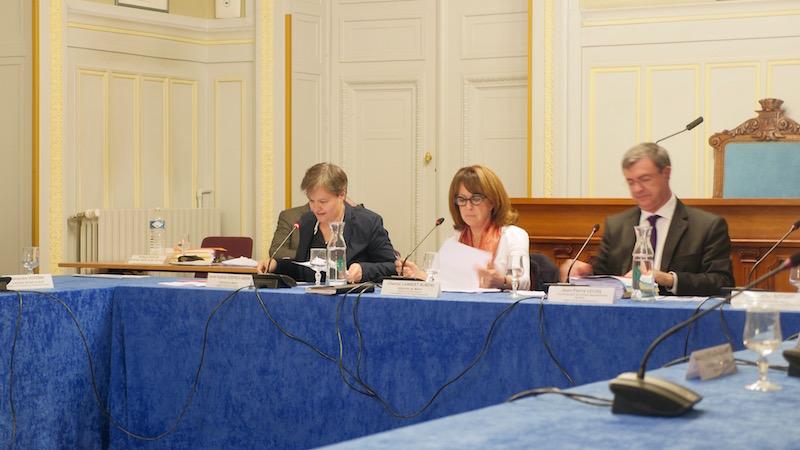 Anne-Sophie Godfroy-Genin au conseil du 6e arrondissement - Photo VD.