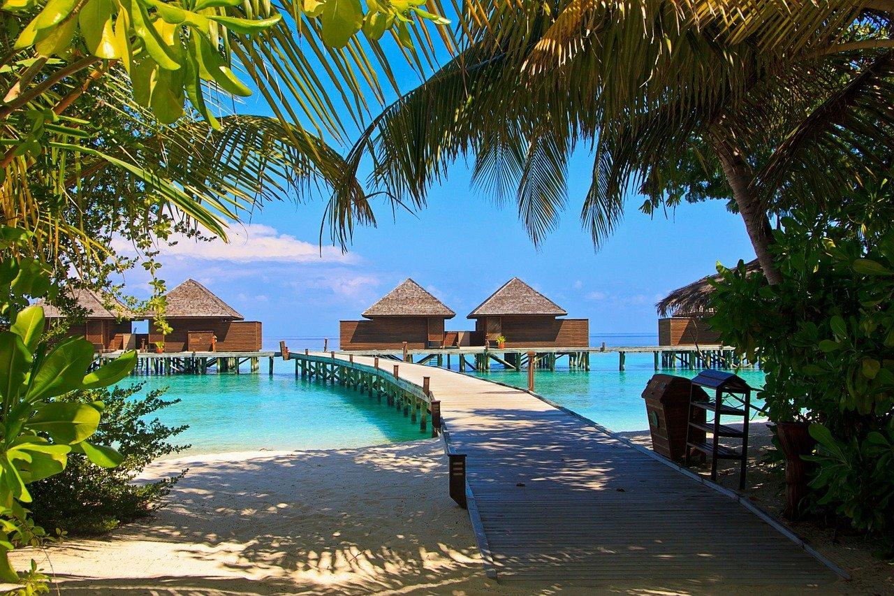 Sur Veligandu Island aux Maldives © SuzyT