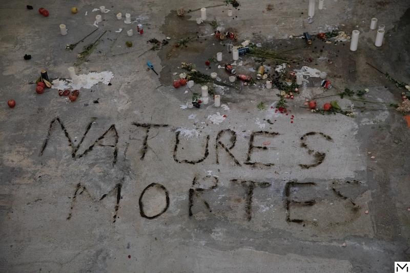 Anne Imhof, Natures Mortes, 2021 Photography : Nadine Fraczkowski Courtesy of the artist and Palais de Tokyo, Paris.