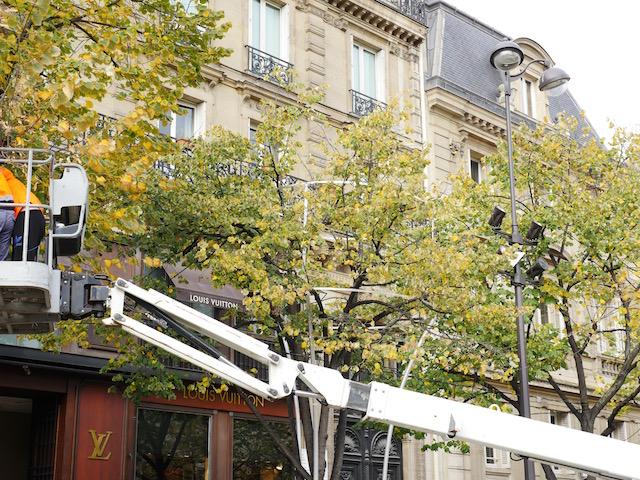 Installation de petites coupes de champagne Place Saint Germain des Prés le 3 novembre 2015 © VD - PT