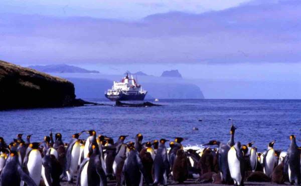 Les Terres et mers australes françaises bientôt au patrimoine mondial de l'UNESCO