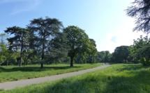 Un corps démembré découvert dans le Bois de Boulogne