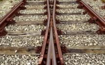 L'Etat s'engage pour l'ex-gare de triage de marchandises de Villeneuve-Saint-Georges