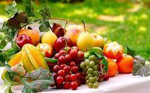 Vente directe de fruits et légumes frais aux consommateurs sur la place de la Bastille