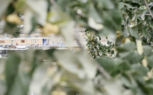 Paris : des touristes signalent un corps humain flottant dans la Seine