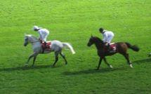 3 octobre 2010 : Qatar Prix de l'Arc de Triomphe