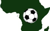 Coupe d'Afrique des Nations : le football africain fait briller l'école française