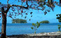 Les aventures de Nini la Petite Souris polynésienne
