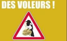 La Seine Saint Denis contre les vols à l'arraché de bijoux en or