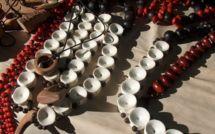 Le voyage d'études et Nini la Souris polynésienne