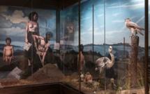 Refurbished Musée de la Chasse et de la Nature due to open