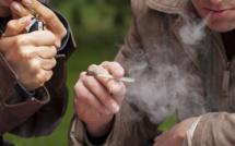 Légalisation, dépénalisation, prohibition : l'éternel débat du cannabis
