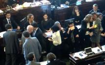 L'UMP, l'UDI-Modem et les écologistes votent contre la Tour Triangle